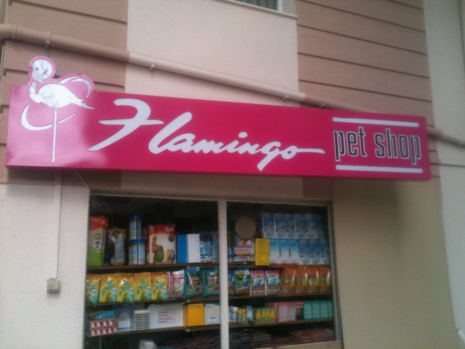 Flamingo Pet Shop